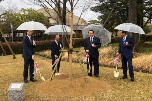 神戸三田キャンパスに5学部再編記念の桜を植樹